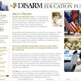 Disarm: Interior Page