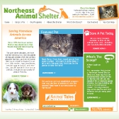 N.E. Animal Shelter: Homepage