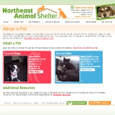 N.E. Animal Shelter: Adopt a Pet